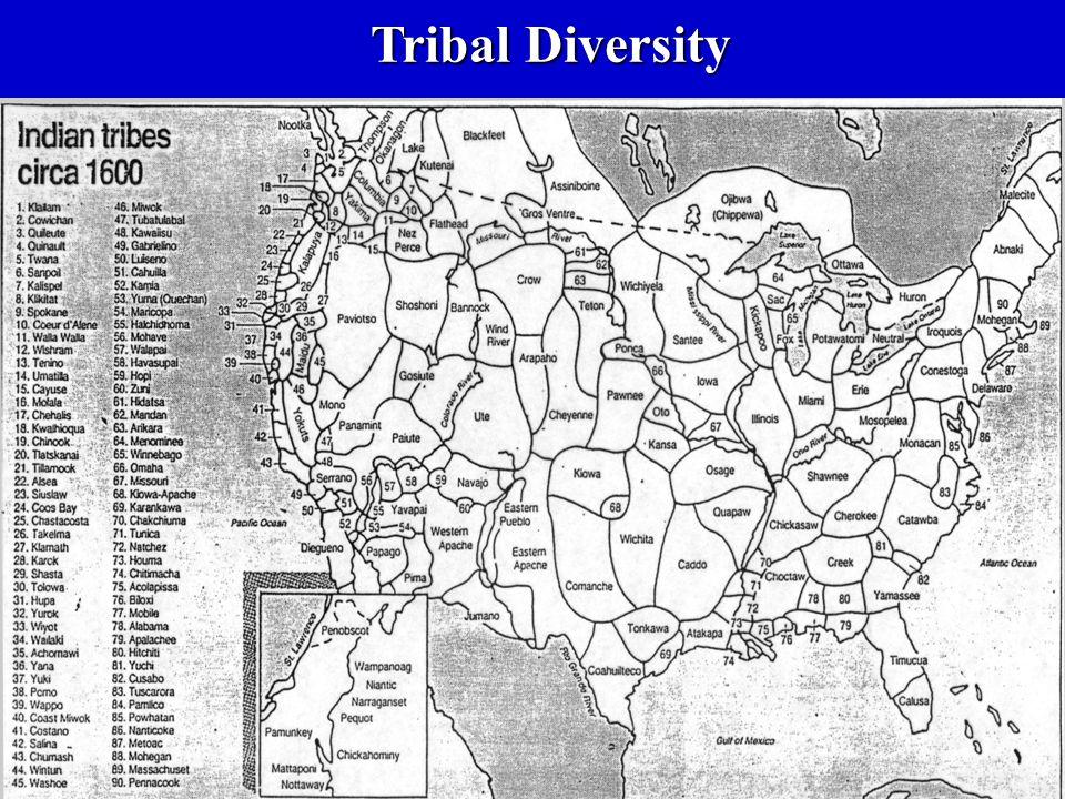 Tribal Diversity
