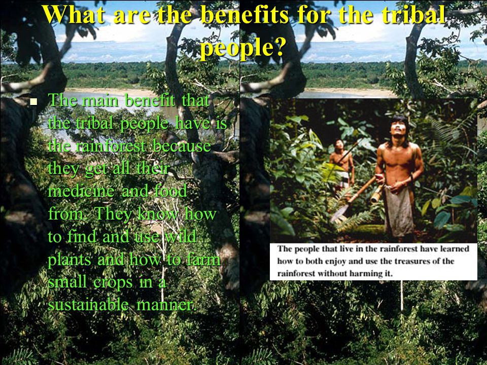 What are the benefits for the tribal people.