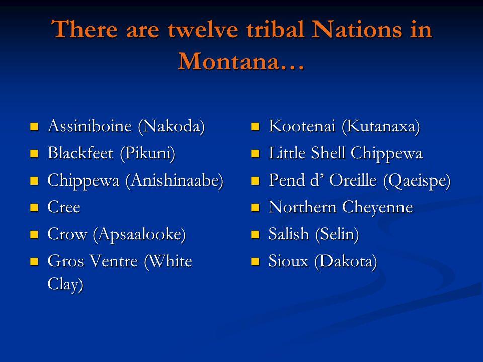 There are twelve tribal Nations in Montana… Assiniboine (Nakoda) Assiniboine (Nakoda) Blackfeet (Pikuni) Blackfeet (Pikuni) Chippewa (Anishinaabe) Chippewa (Anishinaabe) Cree Cree Crow (Apsaalooke) Crow (Apsaalooke) Gros Ventre (White Clay) Gros Ventre (White Clay) Kootenai (Kutanaxa) Little Shell Chippewa Pend d' Oreille (Qaeispe) Northern Cheyenne Salish (Selin) Sioux (Dakota)