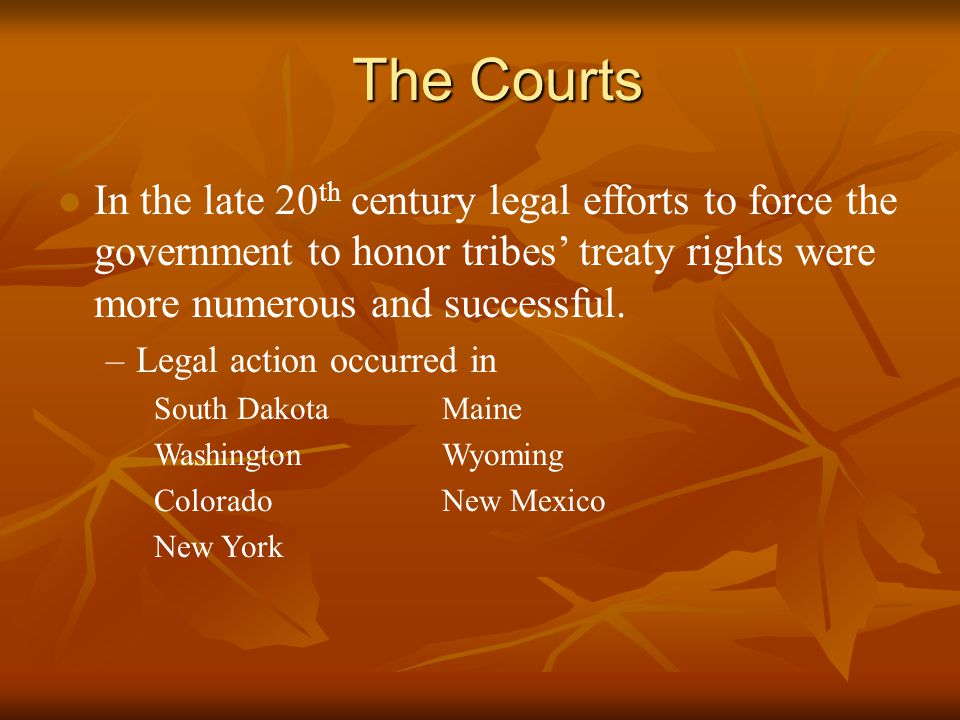 The Courts l In the late 20 th century legal efforts to force the government to honor tribes' treaty rights were more numerous and successful.