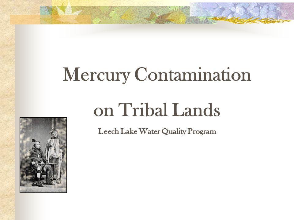 Mercury Contamination on Tribal Lands Leech Lake Water Quality Program