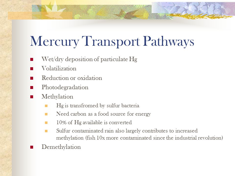 Mercury to methlymercury - Once released, mercury can be deposited onto soil and into water bodies.