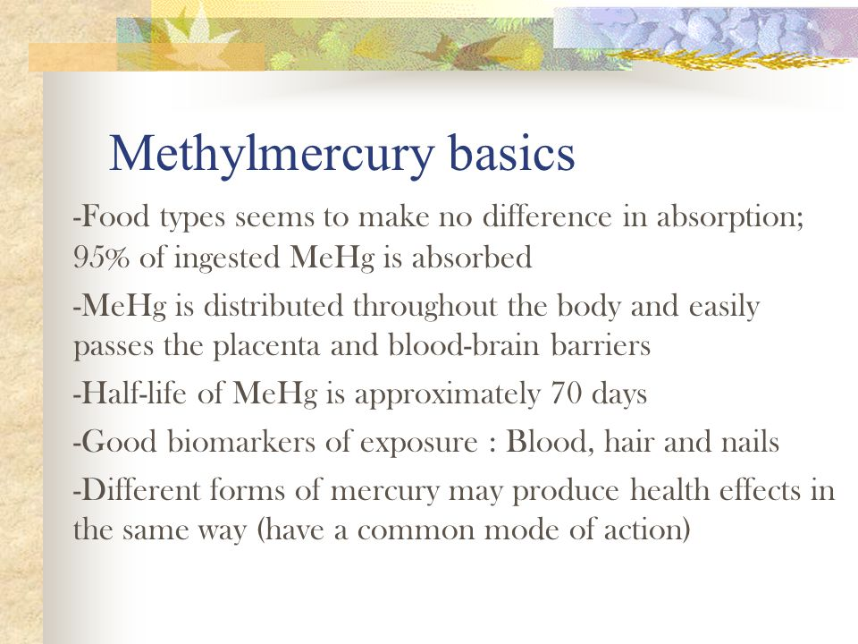 Conclusion -Ingested methylmercury represents the major mercury exposure for most people, especially for Native Americans -Health hazards of methylmercury vary with exposure level and are based largely on observations in humans.