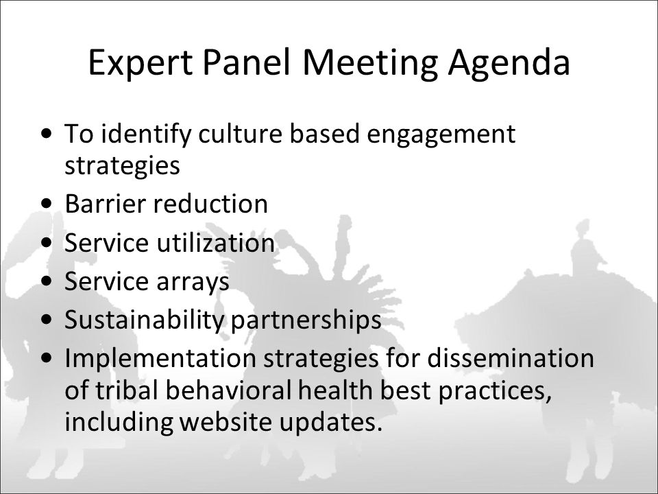 Expert Panel Meeting Agenda To identify culture based engagement strategies Barrier reduction Service utilization Service arrays Sustainability partnerships Implementation strategies for dissemination of tribal behavioral health best practices, including website updates.