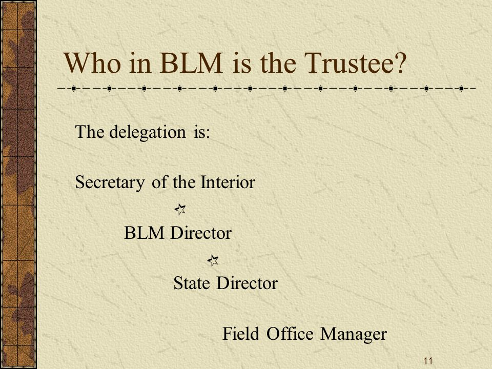 11 Who in BLM is the Trustee? The delegation is: Secretary of the Interior BLM Director State Director Field Office Manager ¶ ¶