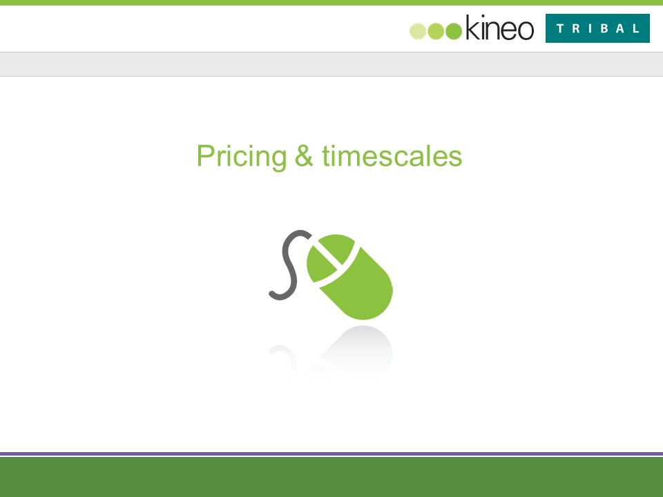 Pricing & timescales