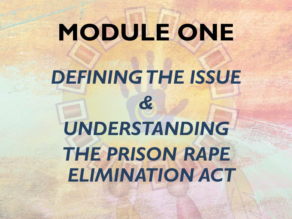 DEFINING THE ISSUE & UNDERSTANDING THE PRISON RAPE ELIMINATION ACT MODULE ONE