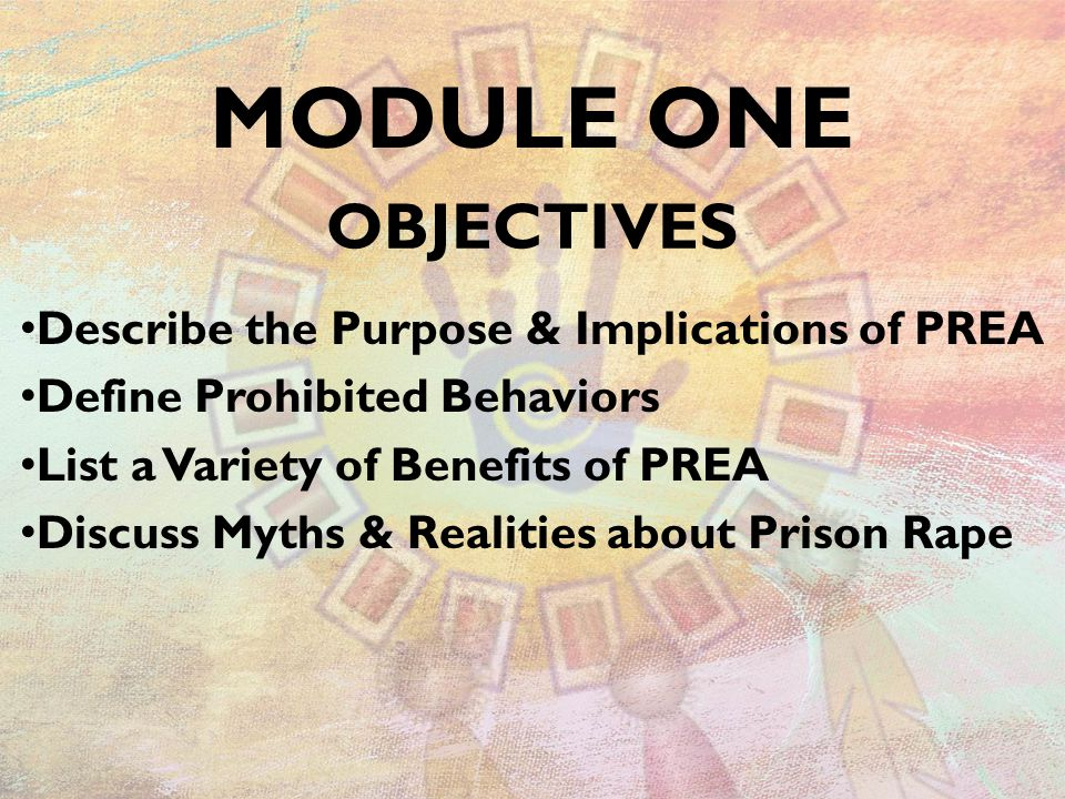 OBJECTIVES Describe the Purpose & Implications of PREA Define Prohibited Behaviors List a Variety of Benefits of PREA Discuss Myths & Realities about Prison Rape MODULE ONE