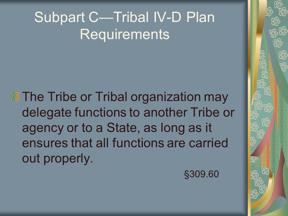 Subpart C—Tribal IV-D Plan Requirements The Tribe or Tribal organization may delegate functions to another Tribe or agency or to a State, as long as it ensures that all functions are carried out properly.