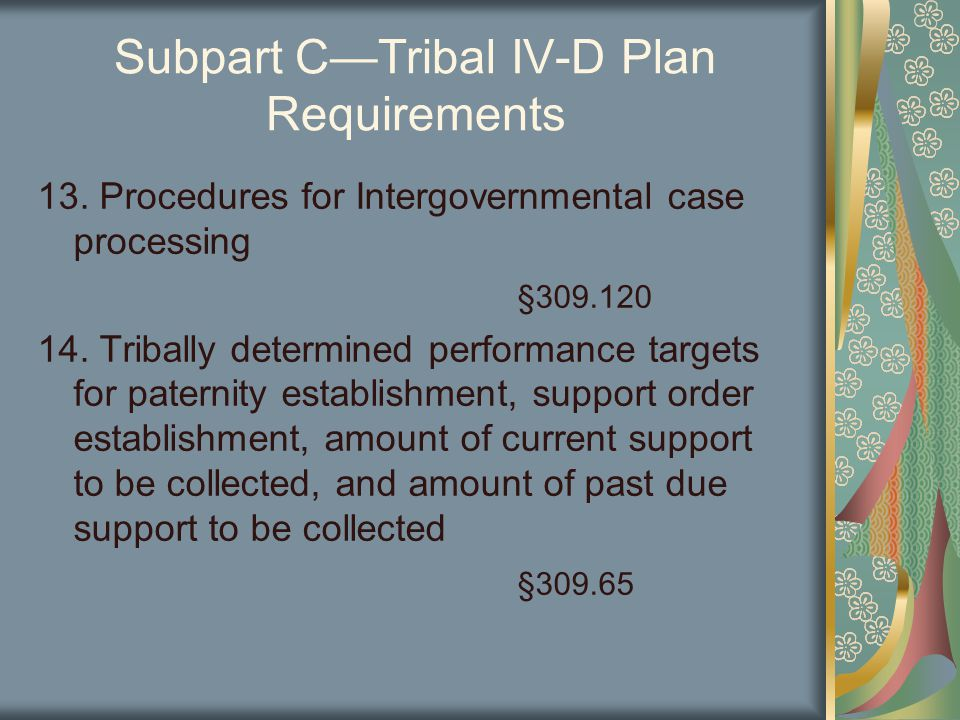 Subpart C—Tribal IV-D Plan Requirements 13.