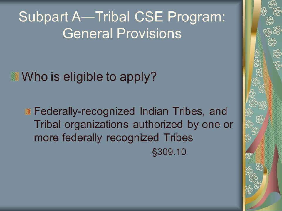 Subpart A—Tribal CSE Program: General Provisions Who is eligible to apply.