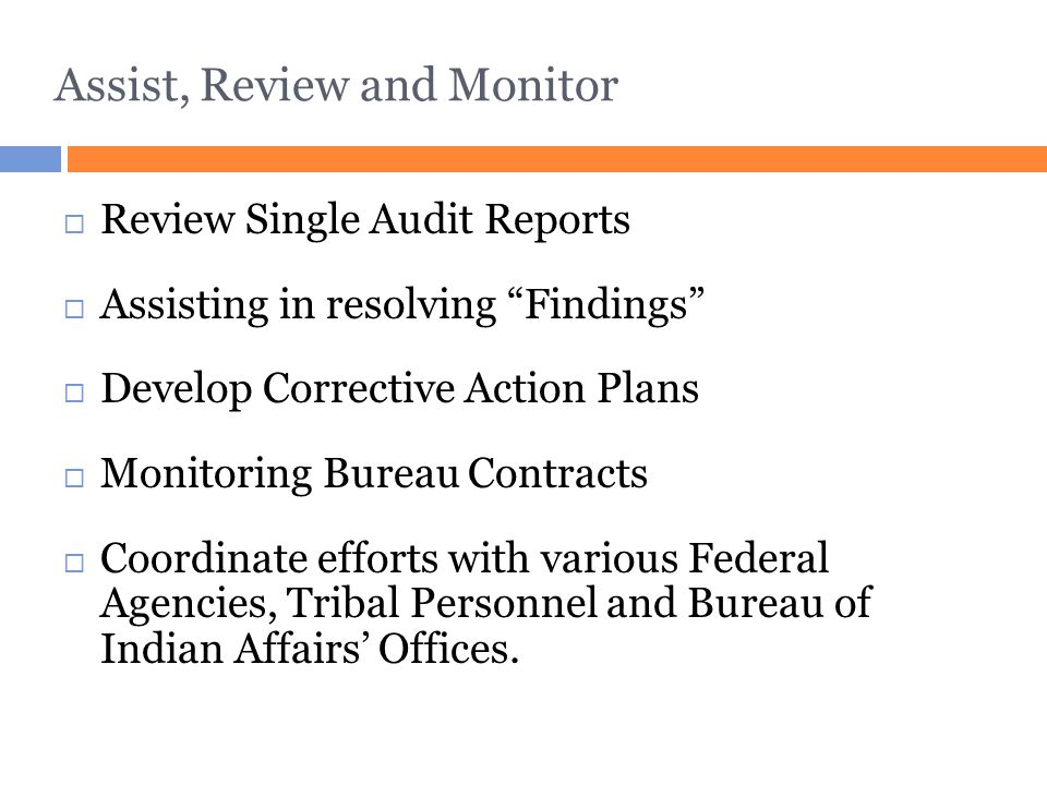 """Assist, Review and Monitor  Review Single Audit Reports  Assisting in resolving """"Findings""""  Develop Corrective Action Plans  Monitoring Bureau Con"""