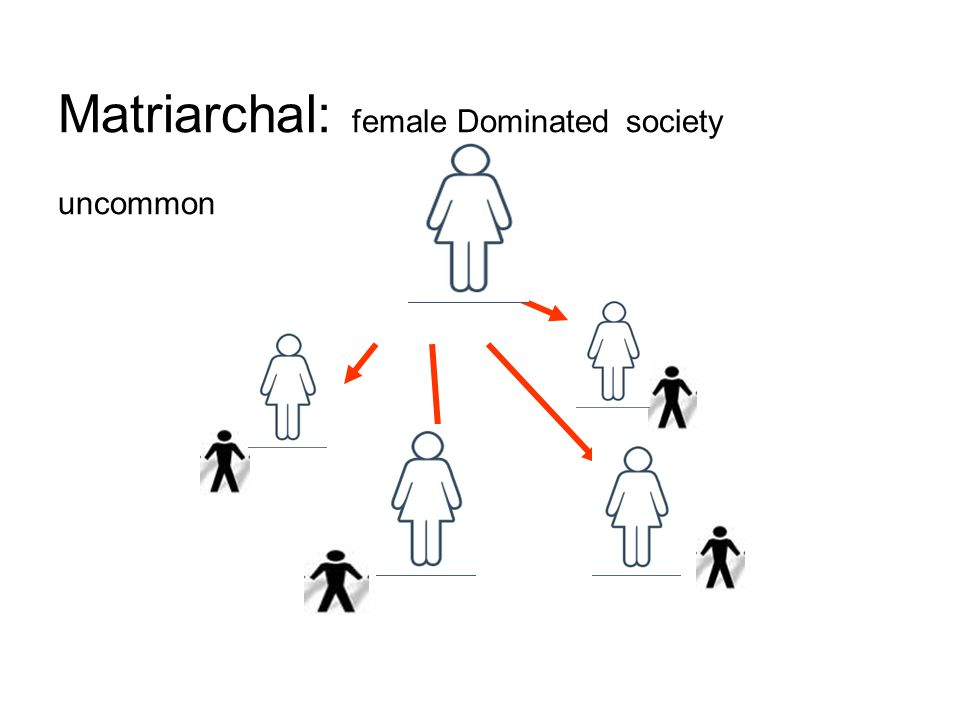 Matriarchal: female Dominated society uncommon