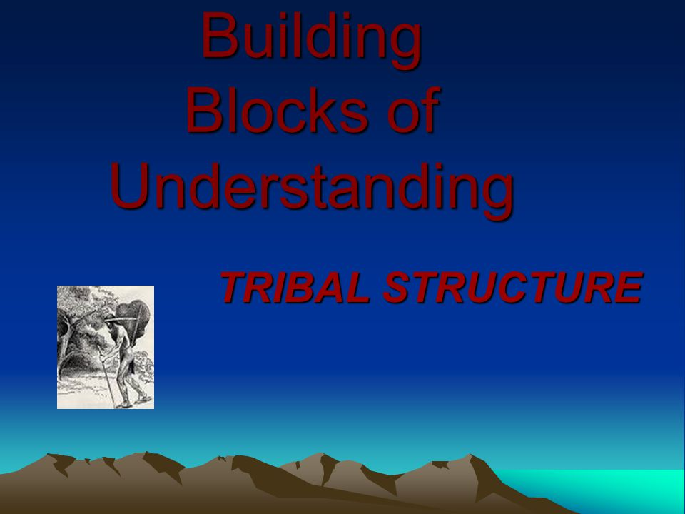 Building Blocks of Understanding TRIBAL STRUCTURE