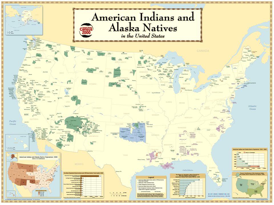 Native American Statistics – USA 4.1 million people reported as American Indian/Alaska Native (AI/AN) 2000 US.