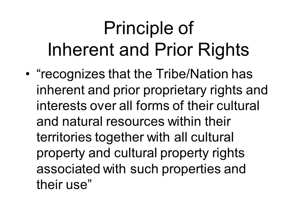 Other Principles Principle of Communication Principle of Empowerment Principle of Equity Principle of Mutual Respect