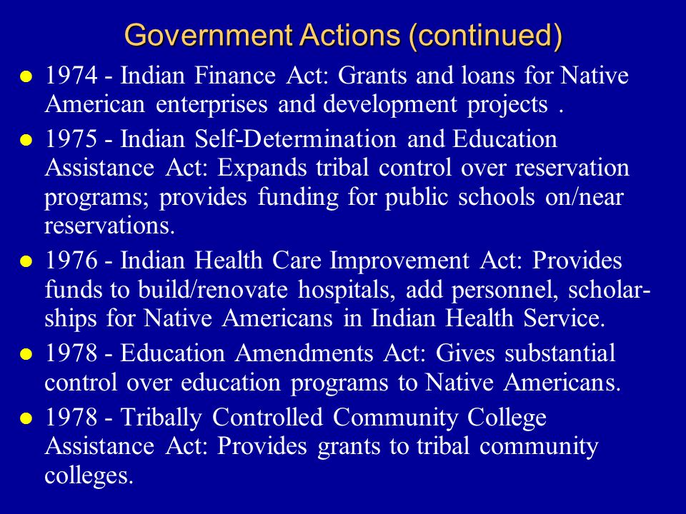 Government Actions (continued) l 1974 - Indian Finance Act: Grants and loans for Native American enterprises and development projects.