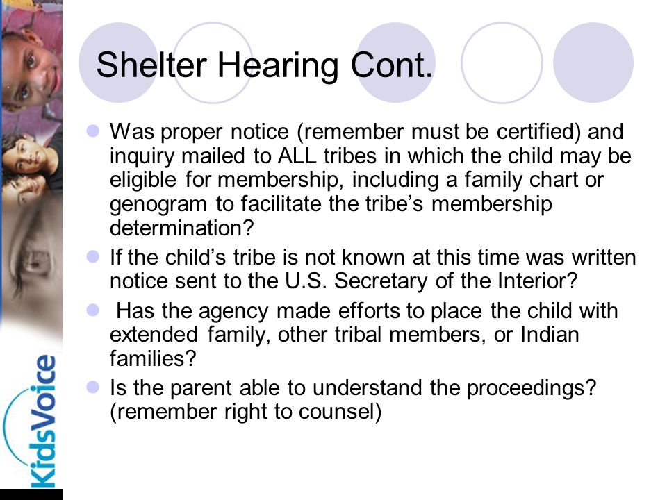 Shelter Hearing Cont.