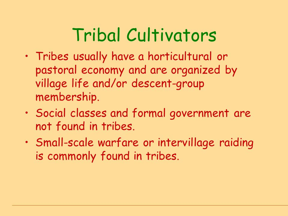 Tribal Cultivators The main regulatory officials are village heads, big men, descent-group leaders, village councils, and leaders of pantribal associations.