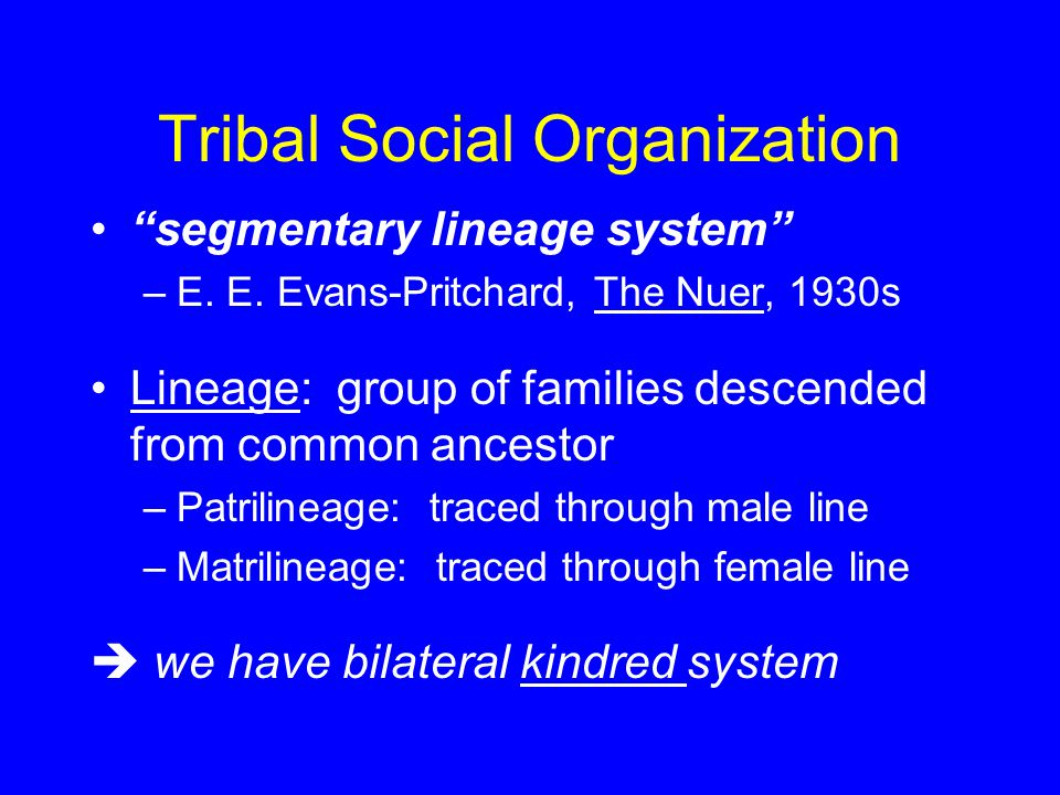 "Tribal Social Organization ""segmentary lineage system"" –E. E. Evans-Pritchard, The Nuer, 1930s Lineage: group of families descended from common ancest"