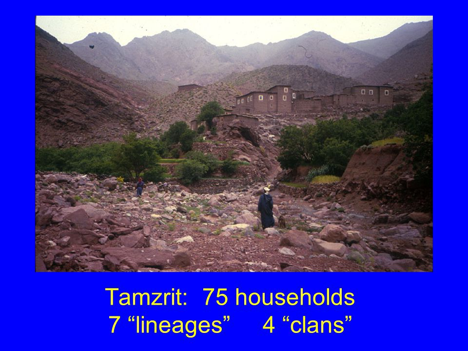 Tamzrit: 75 households 7 lineages 4 clans
