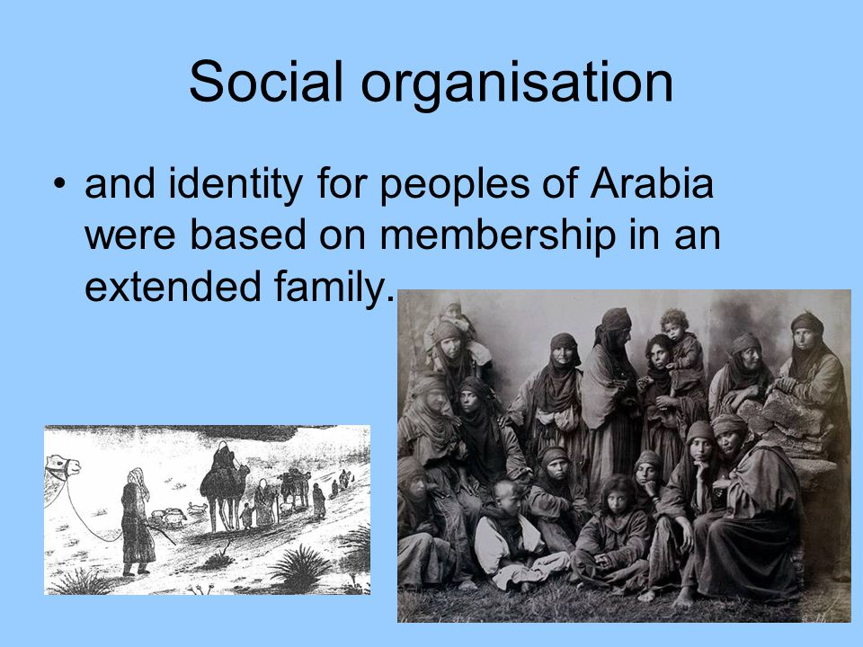 Social organisation A tribe, consisting of a cluster of several clans (groupings of several related families) was led by a shaykh (chief) who was selected by consensus of heads of leading clans or families
