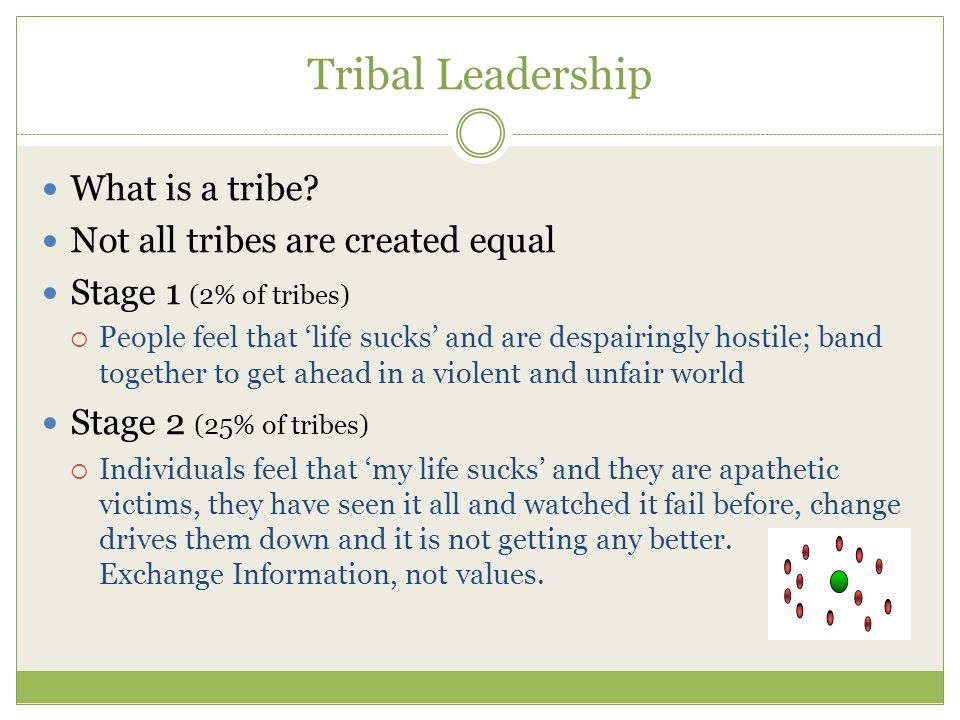 Tribal Leadership What is a tribe.