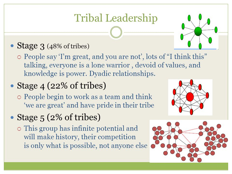 Tribal Leadership Stage 3 (48% of tribes)  People say 'I'm great, and you are not', lots of I think this talking, everyone is a lone warrior, devoid of values, and knowledge is power.