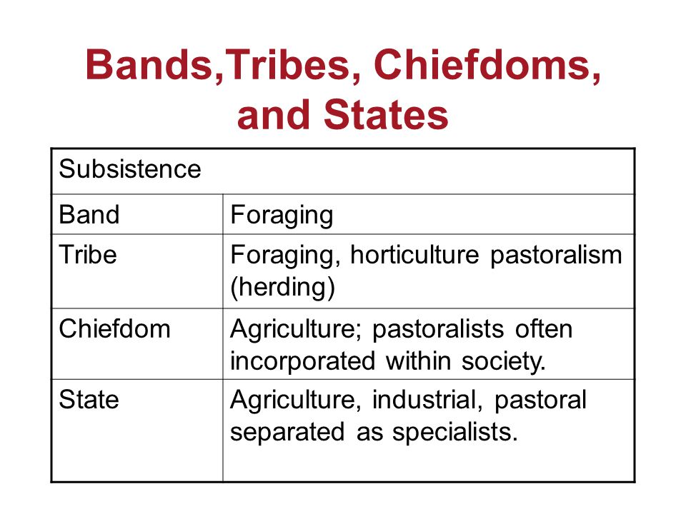 Bands,Tribes, Chiefdoms, and States Subsistence BandForaging TribeForaging, horticulture pastoralism (herding) ChiefdomAgriculture; pastoralists often incorporated within society.