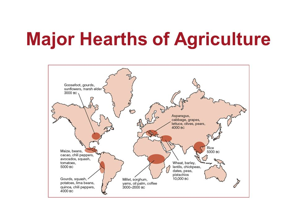 Major Hearths of Agriculture