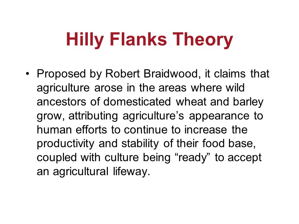 Hilly Flanks Theory Proposed by Robert Braidwood, it claims that agriculture arose in the areas where wild ancestors of domesticated wheat and barley grow, attributing agriculture's appearance to human efforts to continue to increase the productivity and stability of their food base, coupled with culture being ready to accept an agricultural lifeway.