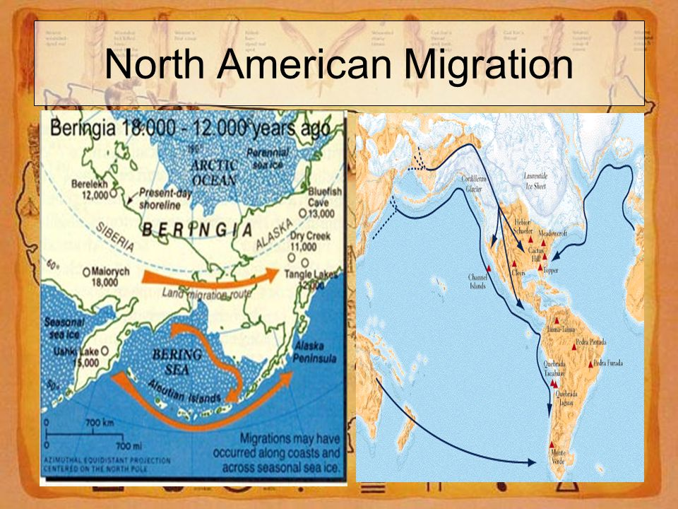 North American Migration