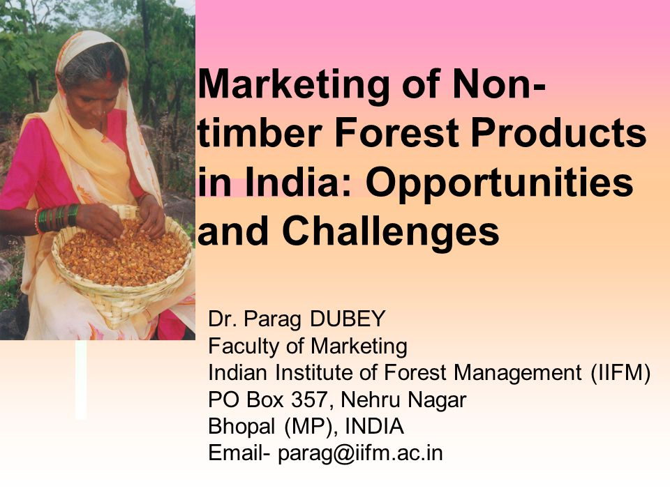 Marketing of Non- timber Forest Products in India: Opportunities and Challenges Dr. Parag DUBEY Faculty of Marketing Indian Institute of Forest Manage