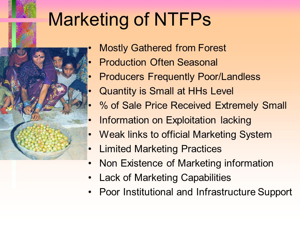 Marketing of NTFPs Mostly Gathered from Forest Production Often Seasonal Producers Frequently Poor/Landless Quantity is Small at HHs Level % of Sale Price Received Extremely Small Information on Exploitation lacking Weak links to official Marketing System Limited Marketing Practices Non Existence of Marketing information Lack of Marketing Capabilities Poor Institutional and Infrastructure Support