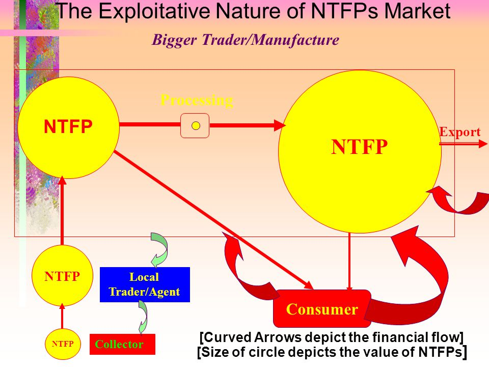 The Exploitative Nature of NTFPs Market Bigger Trader/Manufacture NTFP Consumer Collector Local Trader/Agent Export Processing [Curved Arrows depict t