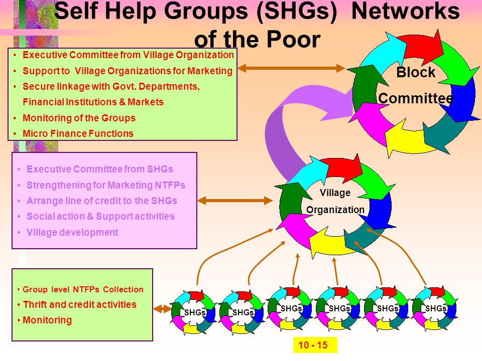 Self Help Groups (SHGs) Networks of the Poor SHGs Village Organization Block Committee Group level NTFPs Collection Thrift and credit activities Monit