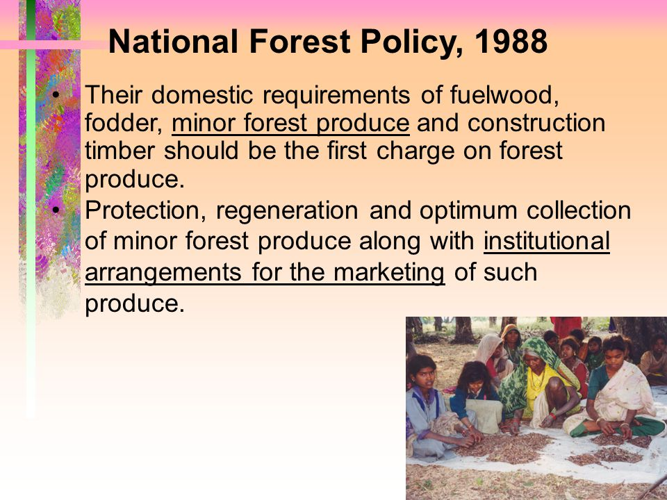 National Forest Policy, 1988 Their domestic requirements of fuelwood, fodder, minor forest produce and construction timber should be the first charge on forest produce.
