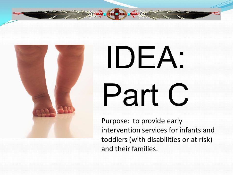 Overview of IDEA, Part B (3-21) Sec.