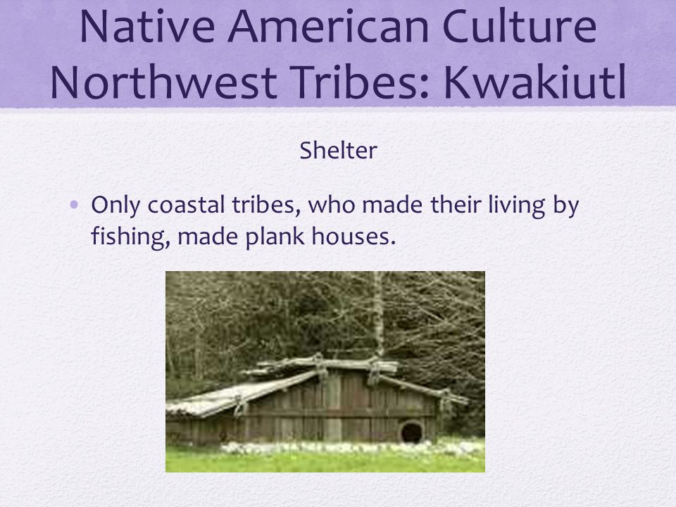 Native American Culture Northwest Tribes: Kwakiutl Shelter Only coastal tribes, who made their living by fishing, made plank houses.