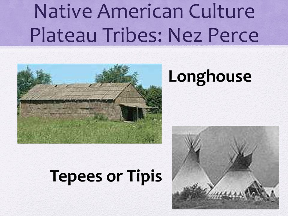 Native American Culture Plateau Tribes: Nez Perce Longhouse Tepees or Tipis