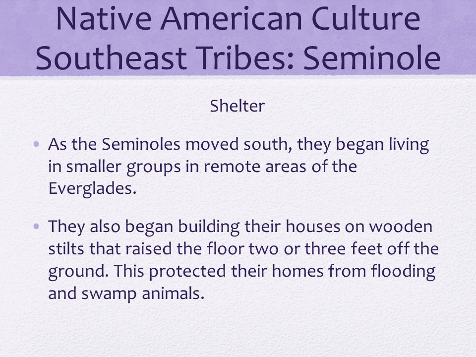 Native American Culture Southeast Tribes: Seminole Shelter As the Seminoles moved south, they began living in smaller groups in remote areas of the Ev