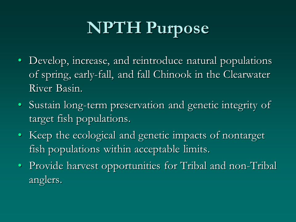 NPTH Purpose Develop, increase, and reintroduce natural populations of spring, early-fall, and fall Chinook in the Clearwater River Basin.Develop, increase, and reintroduce natural populations of spring, early-fall, and fall Chinook in the Clearwater River Basin.