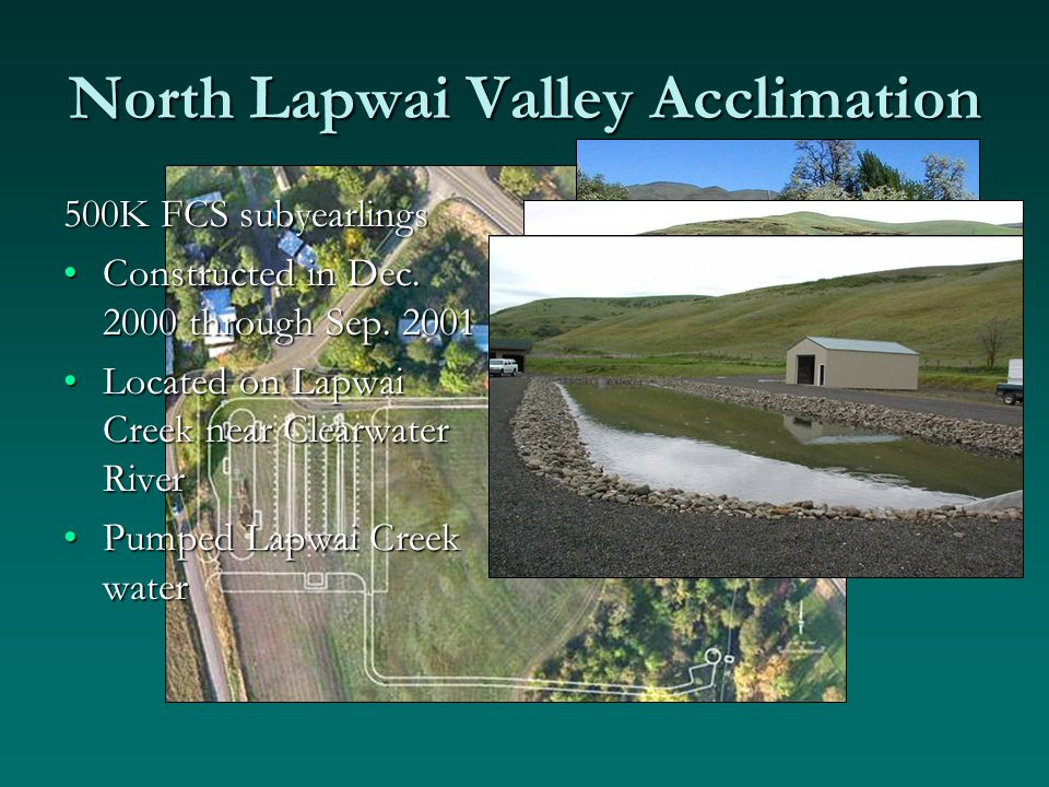 North Lapwai Valley Acclimation 500K FCS subyearlings Constructed in Dec.
