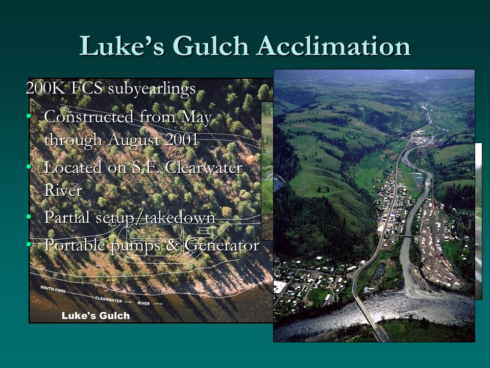 Luke's Gulch Acclimation Constructed from May through August 2001Constructed from May through August 2001 Located on S.F.