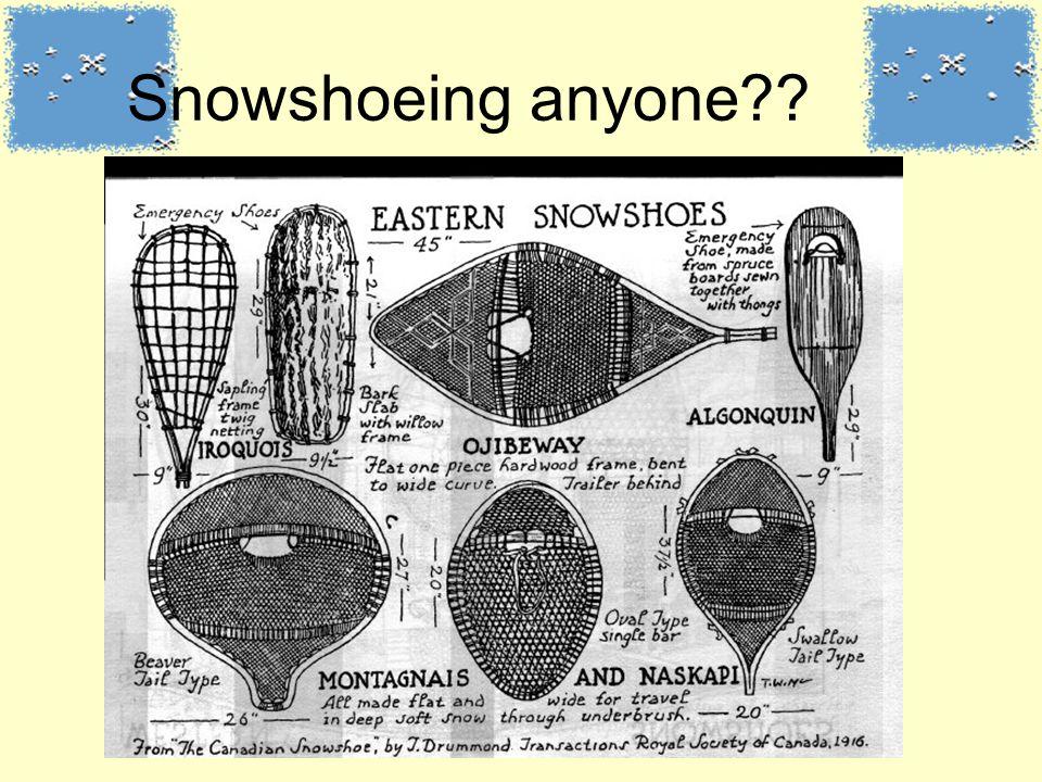 Snowshoeing anyone