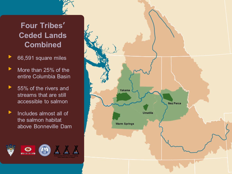 Columbia River Inter-Tribal Fish Commission Salmon decline Returning Columbia River salmon (chinook, steelhead, sockeye, coho) Estimated Avg 17,000,000 1,754,334 millions of fish