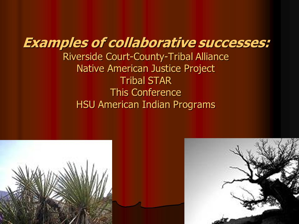 Examples of collaborative successes: Riverside Court-County-Tribal Alliance Native American Justice Project Tribal STAR This Conference HSU American Indian Programs