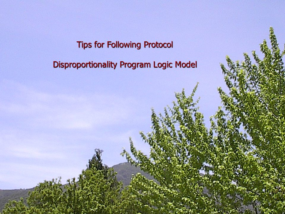 Tips for Following Protocol Disproportionality Program Logic Model