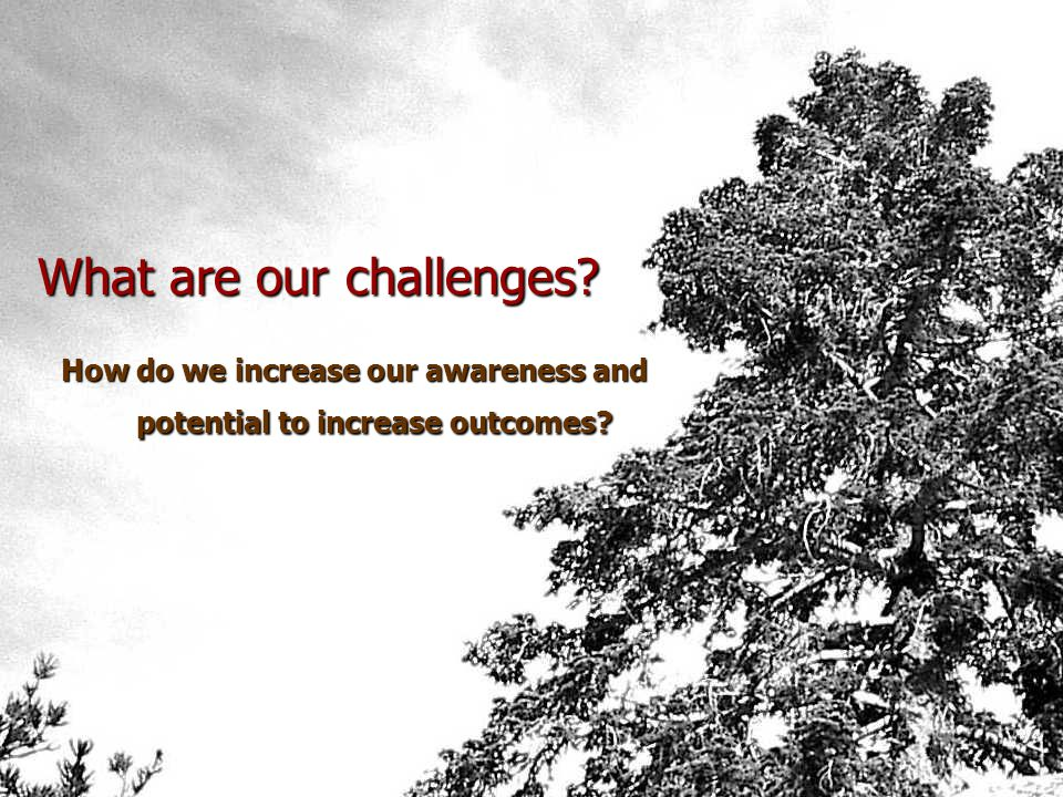 What are our values?