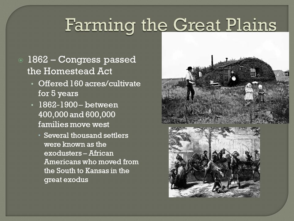  1862 – Congress passed the Homestead Act Offered 160 acres/cultivate for 5 years 1862-1900 – between 400,000 and 600,000 families move west  Severa